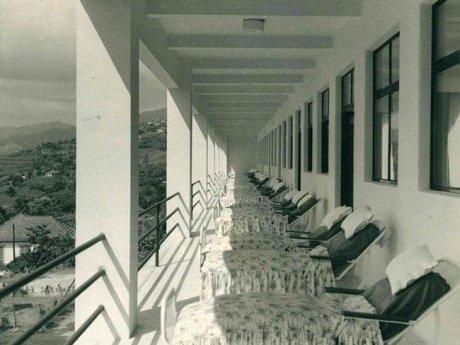 Hospitais biofilia